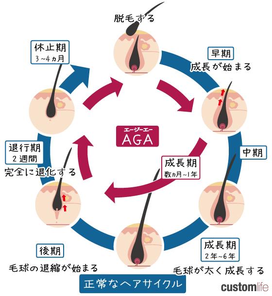 AGA,福岡